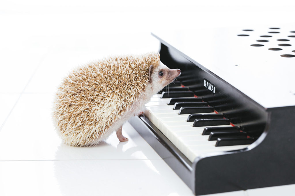 ピアノ上達