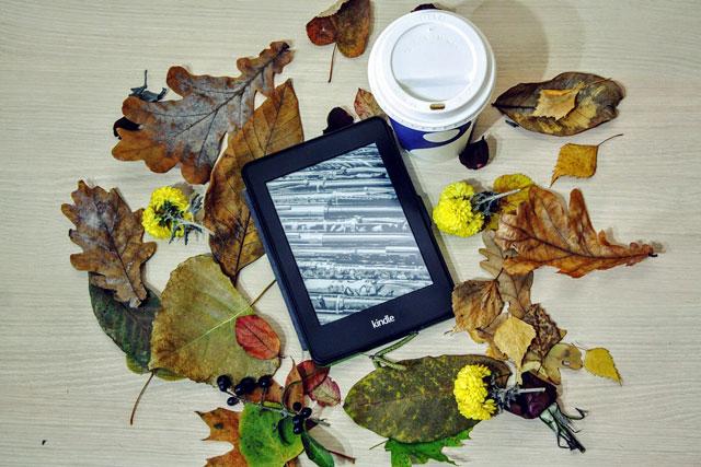 読書の秋!普段本を読まない読書初心者でも読みやすい本は?